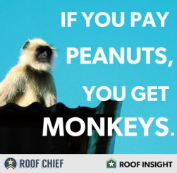 pay-peanuts-get-monkeys